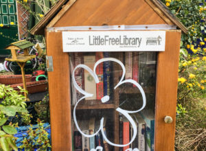What would the digital equivalent of the Little Free Library look like? thumbnail image